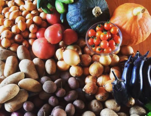 野菜をまるごと使った作り置きをマスターできる料理教室 【横浜】