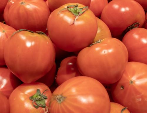 夏野菜の主役、トマトの栄養、見分け方、保存方法