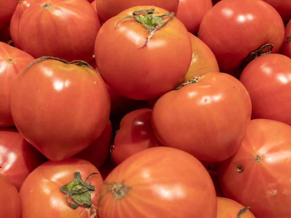夏野菜の主役トマトのおいしいいただきかた